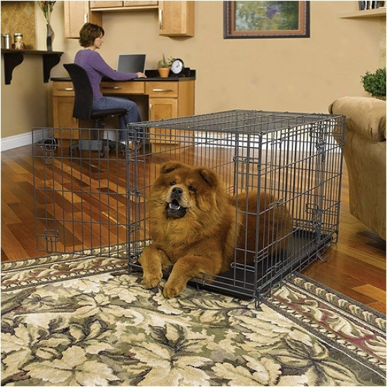 Midwezt Homes For Pets Select Fold & Carry Triple-door Dog Crate