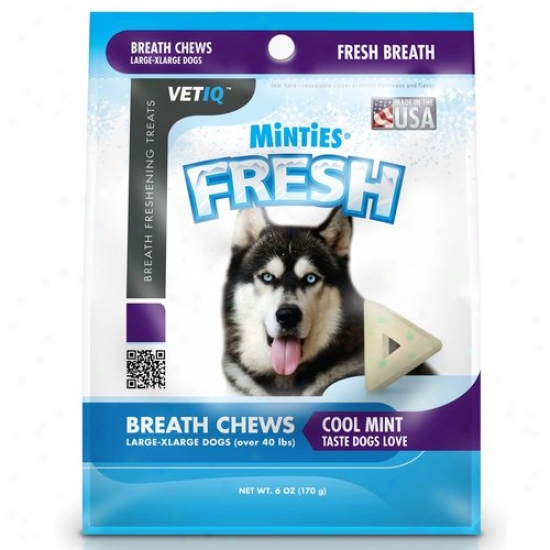 Minties From Vetiq Fresh, L/xl, 6 Oz