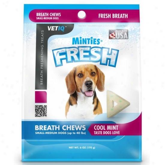 Minties From Vetiq Fresh, S/m, 6 Oz