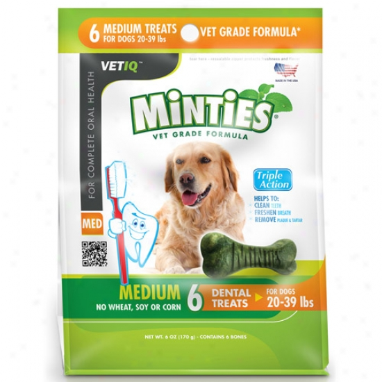 Minties From Vetiq Medium Dog Dental Treats, 6 Oz