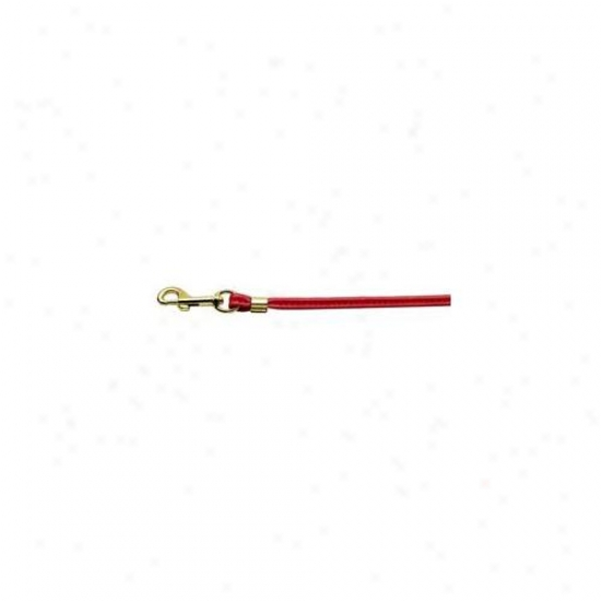 Mirage Favorite Products 80-04 Rd Gd Hrw Round Leash Red Gold Hardware