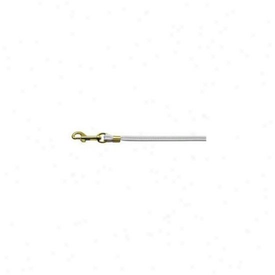 Mirage Pet Products 80-04 Wt Gd Hrw Round Leash White Gold Hardware