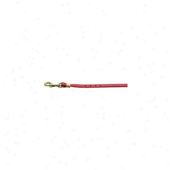 Mirage Fondle Products 80-05 Rd Gd Hrw Color Crystal Leash Red  With  Red Stones Gold Hardware
