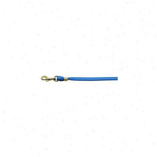 Mirage Pet Products 80-12 Bl Gd Hrw Flat Plain Leashes Blue Gold Hardware