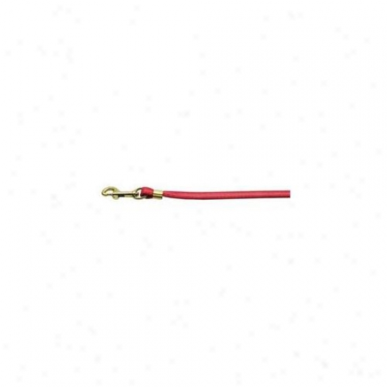 Mirage Pet Products 80-12 Rd Gd Hrw Flat Plain Leashes Red Gold Hardware