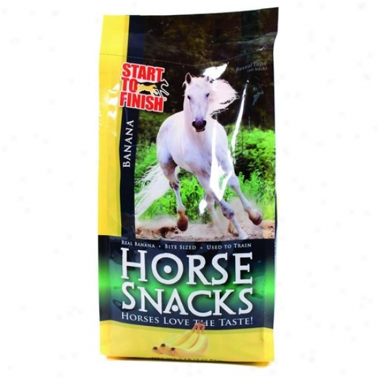 Msc 200525 Banana Horse Snacks