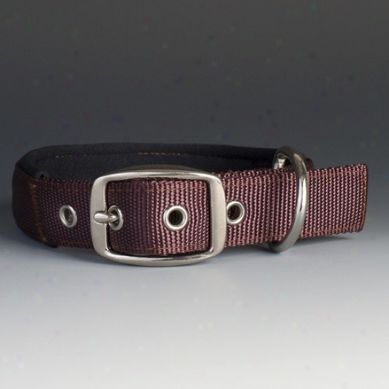 Mud River Dog Products The Swagger Dog Collar In Brown