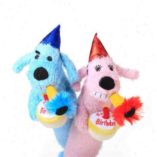 Multipet Loofa Dog Birthday Toy