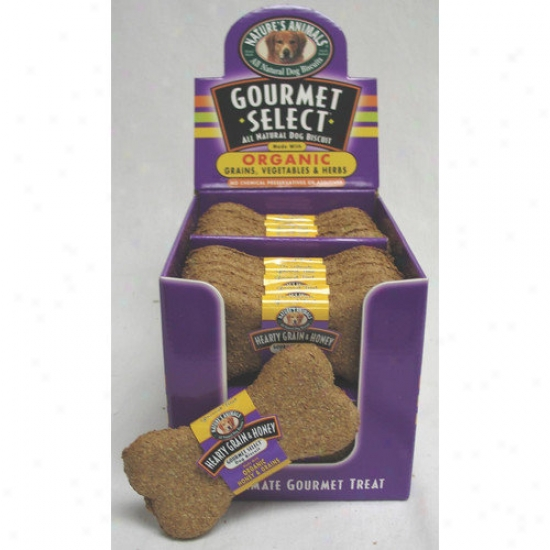 Nature's Animals Gourmet Select Organic Biscuit Dog Treat (48-pack) (set Of 48)