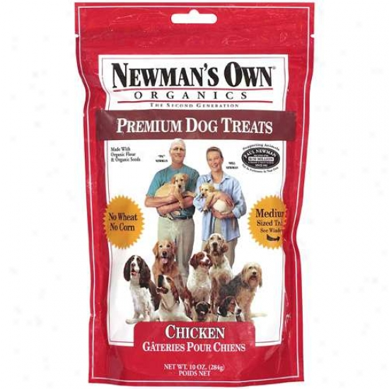 The best dog treats pack plenty of protein and steer clear of additives. We consulted experts, scrutinized ingredients, and had our pups taste-test.