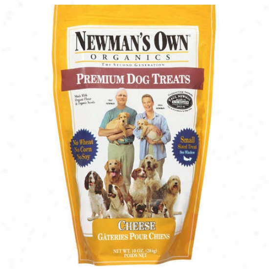 Newmans Own Organics 60890 Organix Cheese Small Dog Treats