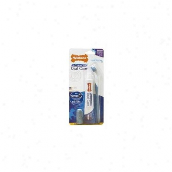 Nylabone Corp - Bones - Advanced Oral Care Senior Drntal Kit Small Dog - Nppd401p