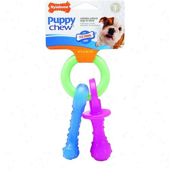 Nylabone Corp N330p Fop Teething Pacifier