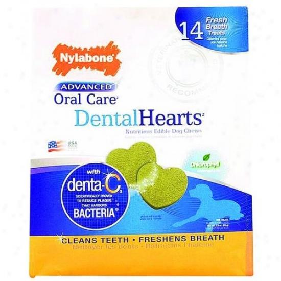 Nylabone Corp Npd05m14p Advanced Oral Care Dental Hearts Treats