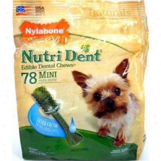 Nylabone Corp Ntd418m78p Nutri Dent