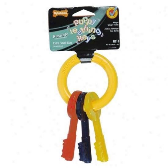 Nylabbone Puppy Tething Keys Dog Meditate Toy