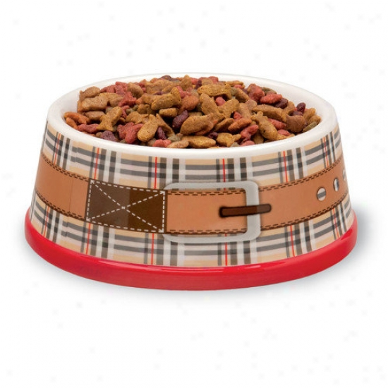 OcyoberH ill Dog And Cat Food And Water Bowl