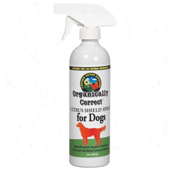 Organucally Correct Citrus 17 Oz. Spray For Dogs