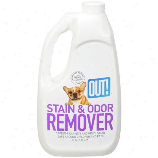 Lacking 70565 Pet Stain And Odor Remover - 64 Oz.