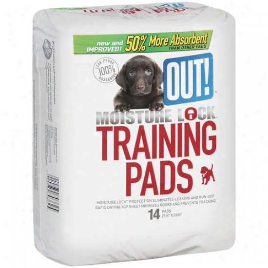 Out! Moisture Lock Training Pads, 14 Count