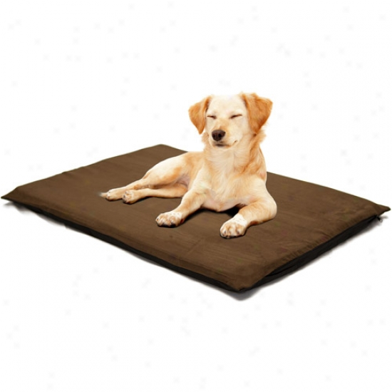 "Paw 2"" Orthopedic Foam Pet Bed, Suede Espresso"