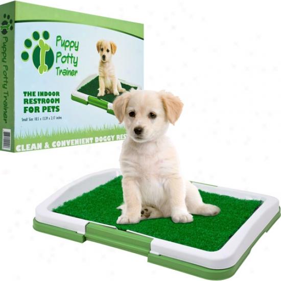 Paw Indoor Puppy Potty Trainer