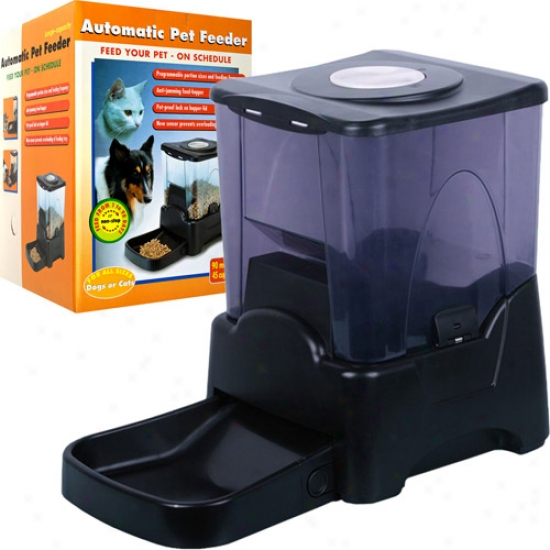 Paw Extensive Power  Automatic Pet Feedrd