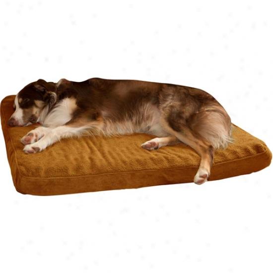 Paw Orthopedic Super Foam Pet Bed, Camel
