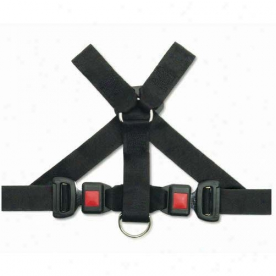 Pet Buckle Universal Travel Harness
