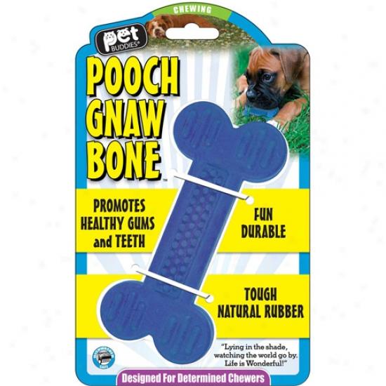 Pet Buddies Pooch Gnaw Bone Dog Toy