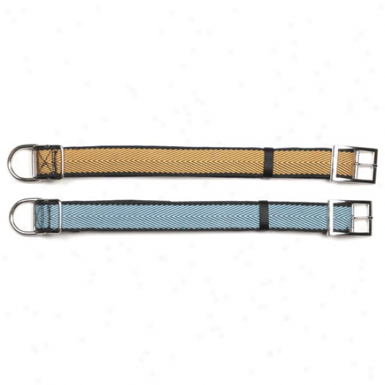 "Pet Champion 1.25"" Herringbone Large Collar, 1ct (color Will Deviate)"