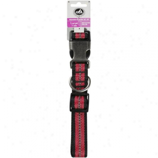 Pet Champion Adjustable Larg3 Collar