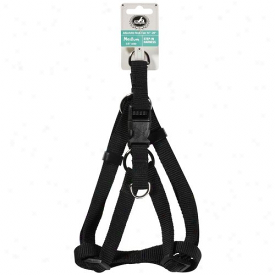 Pet Champion Black Step-in Medium 5/8 In Wide Pet Harness