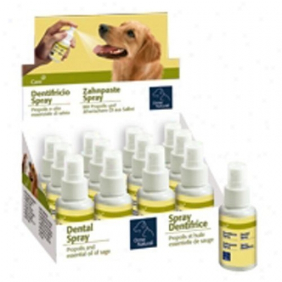 Pet Ego Dental Spray (12 Case)