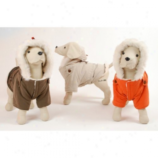 Pet Ego Dogrich Alaskan Dog Coat