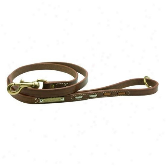 Pet Ego Leading Dog Leash With Inserts - Brown