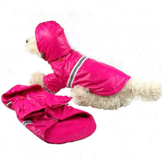 Pet Real person Reflecta Sport Dog Rainvreaker With Removable Hood In Musturd