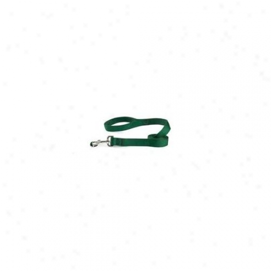 Pet Pals Tp28 46 43 Guardian Gear Dbl Layer Lead 4 Ft Hunter Green