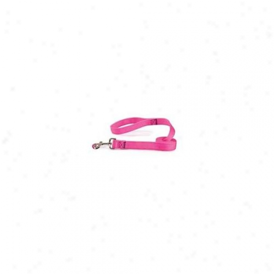 Pet Pals Tp648 46 33 Guardian Gear Dbl Layer Lead 4 Ft Flamingo Pink