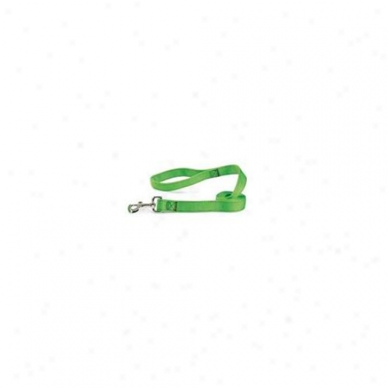 Pet Pals Tp648 66 29 Guardian Gear Dbl Layer Lead 6 Ft Electric Lime