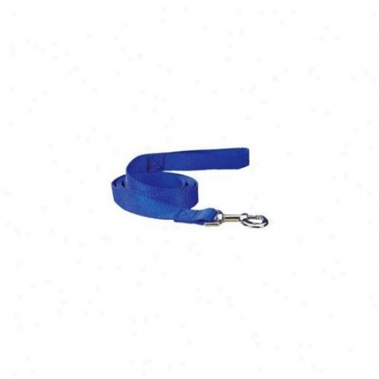 Pet Pals Tp819 40 19 Guardian Gear Nylon Lead 4 Ft X . 62 In Blue