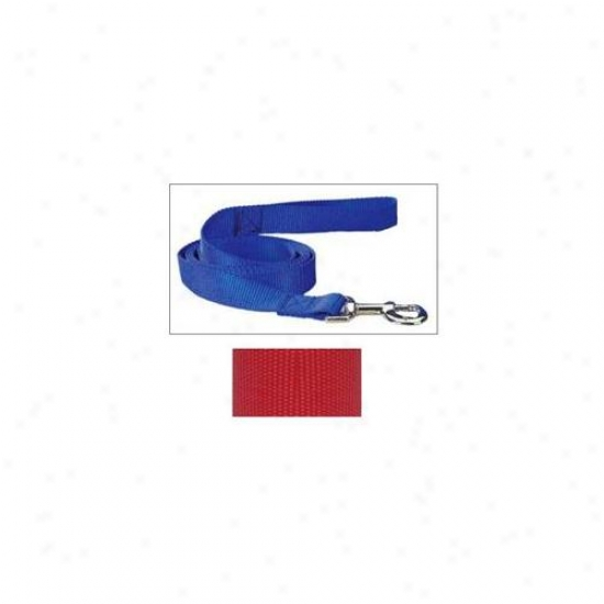 Pet Pals Tp819 66 83 Guardian Array Nylon Lead 6 Ft X 1 In Red