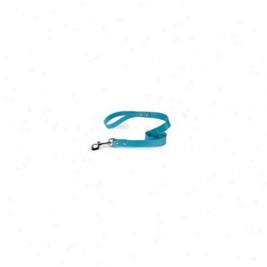 Pet Pals Za1314 66 16 Gg Waterproof Lead 6 Ft X 1 In Bluebird P