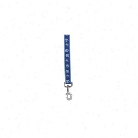 Pet Pals Za886 44 19 Two Tone Pawprint Lead 4 Ft X . 62 In Blue