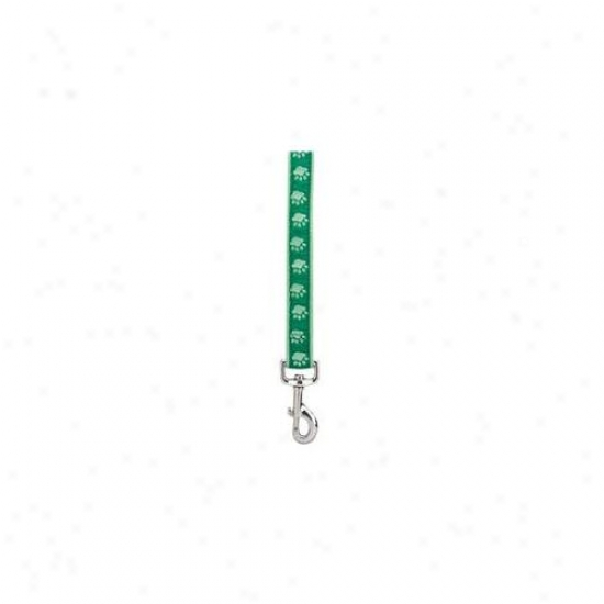 Pet Pals Za886 64 43 Two Temper Pawprint Lead 6 Ft X . 62 In Green