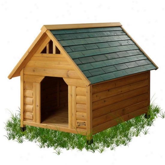 Pet Squeak Alpine Lodge Dog Abide