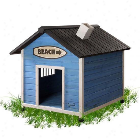 Pet Squeak Beach Dog House