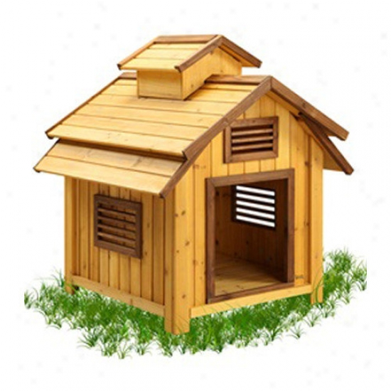 Pet Squeak Bird Dog House