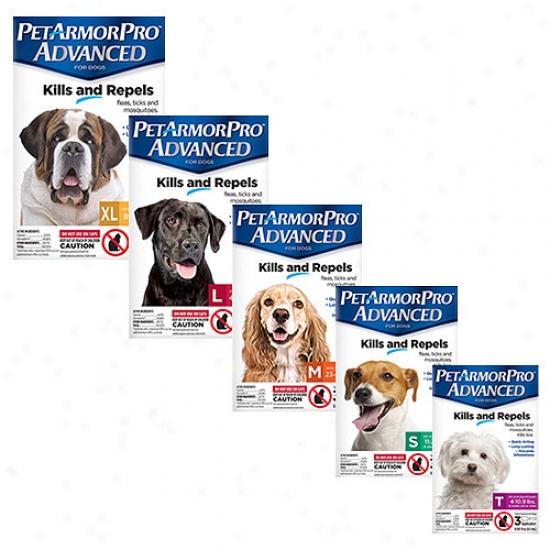 Petarmorpro Advanced Flea, Tick And Mosquito Local Solution For Dogs, 3ct - Choose 1