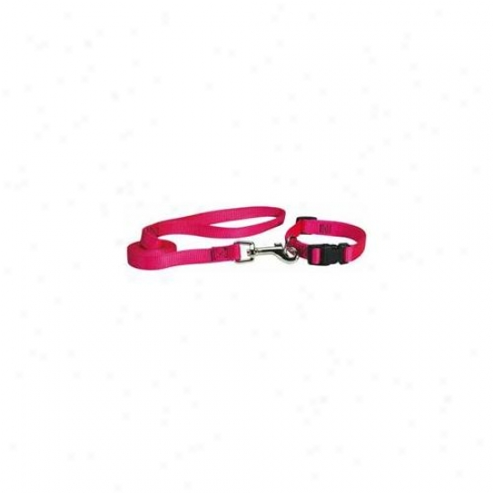 Petedge Tp809 40 33 Guardian Gear Lead 4 Ft X 5/8 In Flamjngo Pink